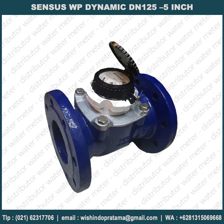 watermeter-sensus-dynamic-dn125