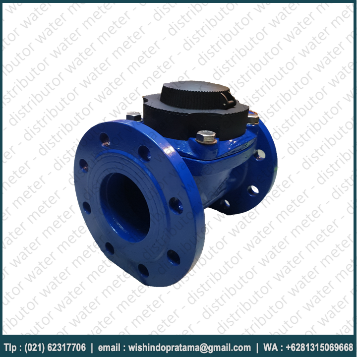 water-meter-amico-dn100